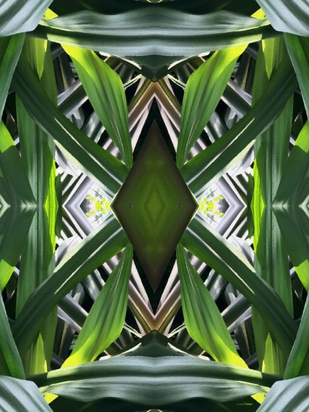 Green Leaves Abstract Multi-Dimensions
