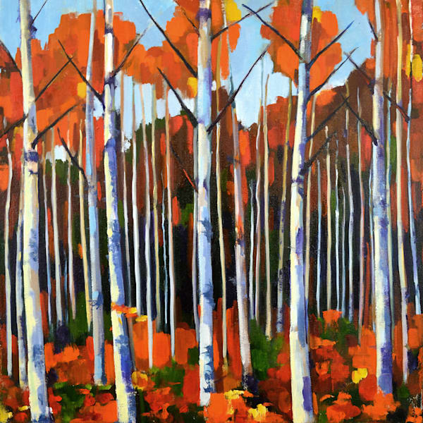 Autumn Birch Forest Small Art | Jenn Hallgren Artist