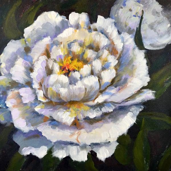 White Peonies Art | Jenn Hallgren Artist