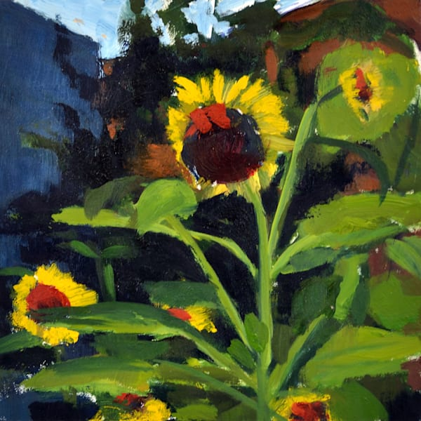 Mini Sunflowers/South St Gardens Art | Jenn Hallgren Artist