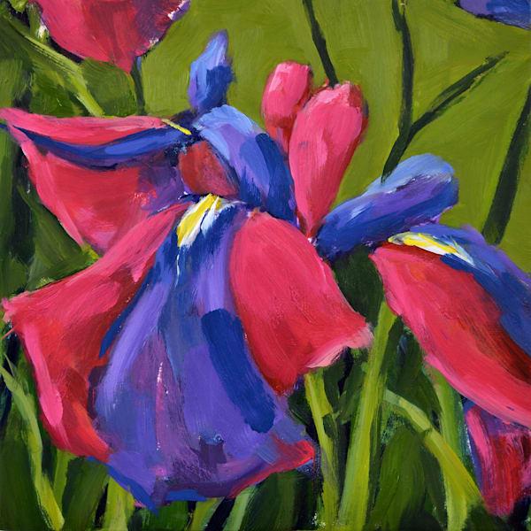 Louisiana Iris Mini Ii Art | Jenn Hallgren Artist