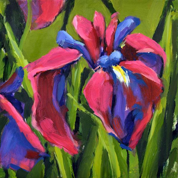 Louisiana Iris Mini I Art | Jenn Hallgren Artist