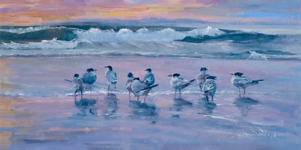 sunset serenade beach buddies