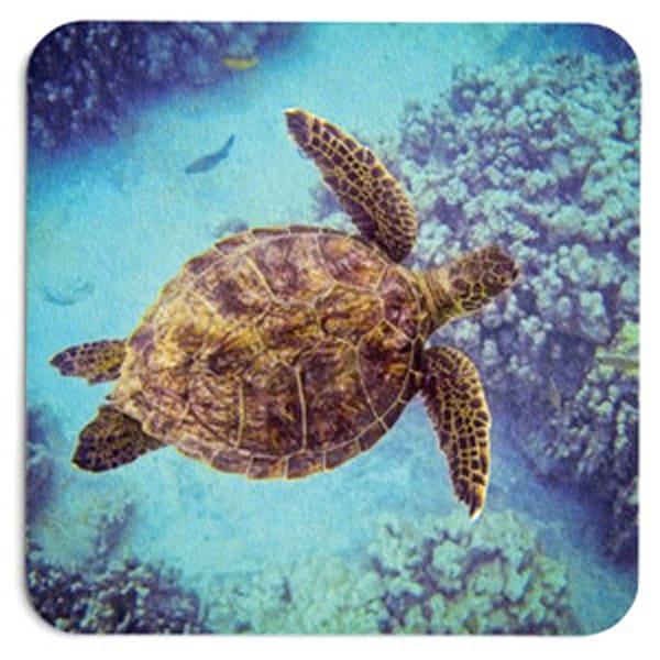 Swimming Honu Coaster Set | Bird In Paradise