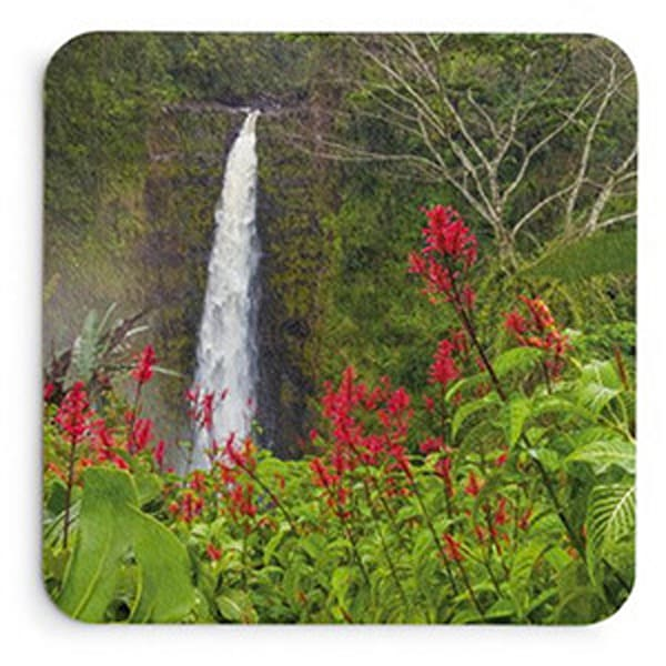 Akaka In Red Coaster Set | Bird In Paradise