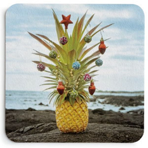 Christmas Pineapple On Lava Coaster Set | Bird In Paradise