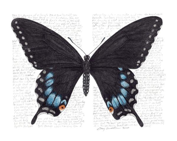 Papiliopolyxene Art   Greg Lewallen