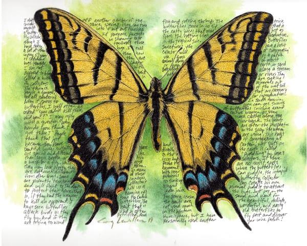 Papiliomulticaudata Art   Greg Lewallen