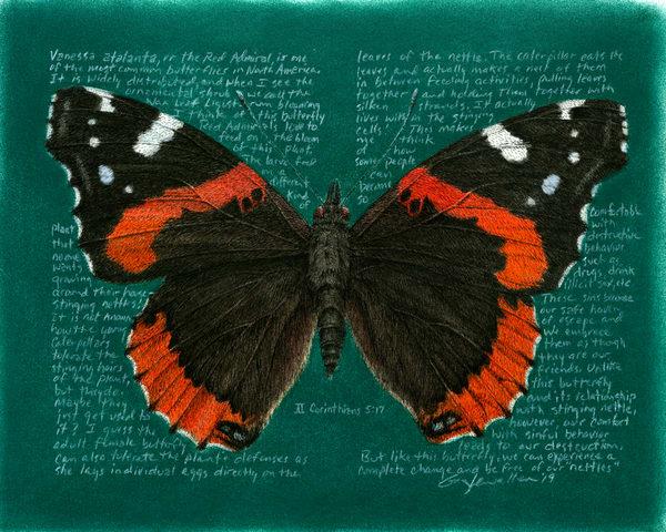 Vanessaatalanta Art   Greg Lewallen