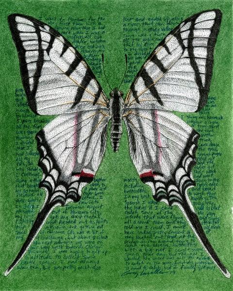 Eurytidesprotesilausdariensis Art   Greg Lewallen