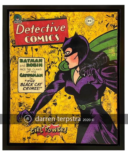 Catwoman: Girl Power Series Art   Darren Terpstra Artist