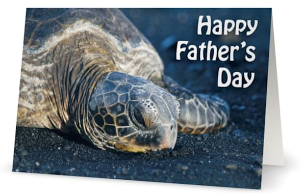 """Father's Day """"Black Sand Nap"""" Card 