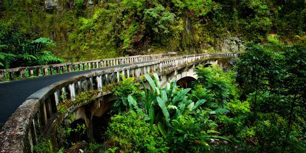 Bridge To Hana Photography Art   Douglas Hoffman Photography