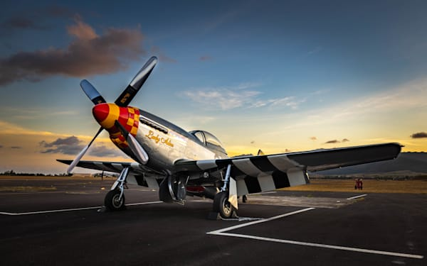 P 51 Asleep In Hawaii   Rs36 Art   Pictures Plus