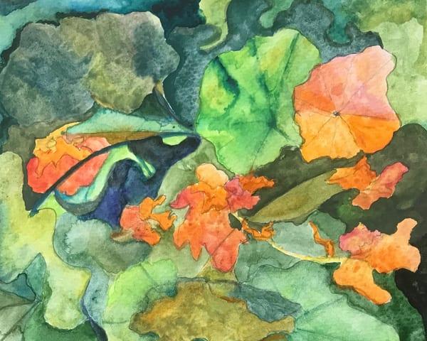 Nasturtiums Art | Ruth Feldman Fine Art