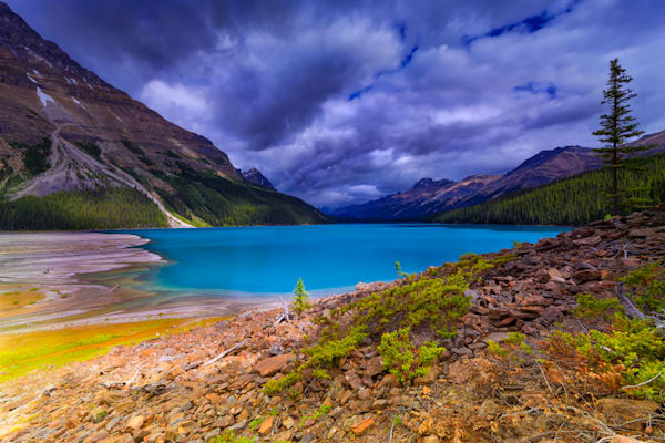 Peyto Lake in Banff National Park.Canadian Rockies | Rocky Mountains |
