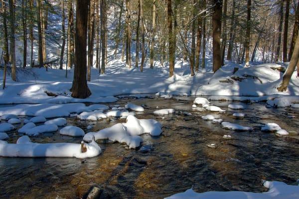 Winter Solitude Photography Art | RAndrews Photos