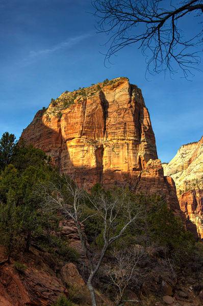 "Zion National Park ""Angel's Landing"""