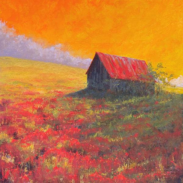 Barn Poppies Art | Kurt A. Weiser Fine Art