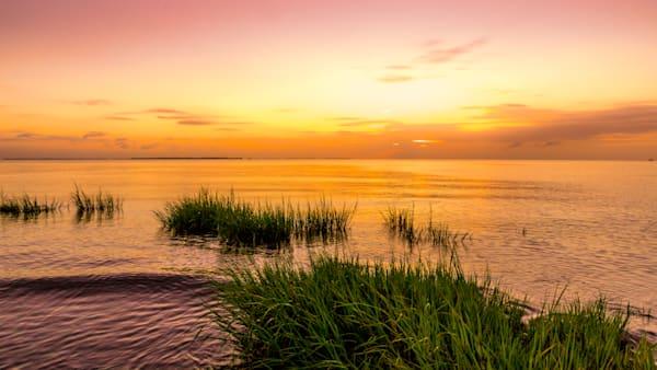 Coffin Point Sunrise Marsh 1 Photography Art   Willard R Smith Photography