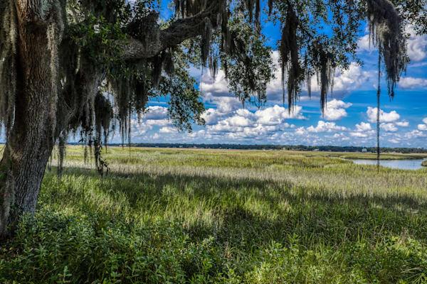 Summer Afternoon Photography Art   Willard R Smith Photography