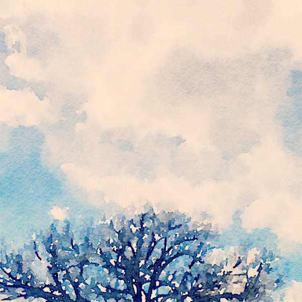 watercolor-photo, tree-top, clouds