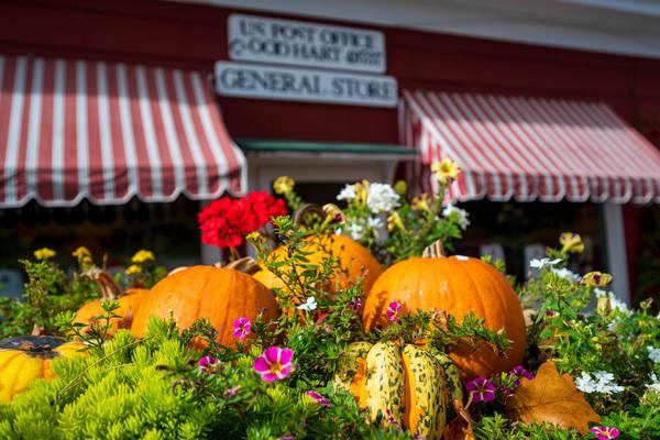 Michigan Market in Fall 0582