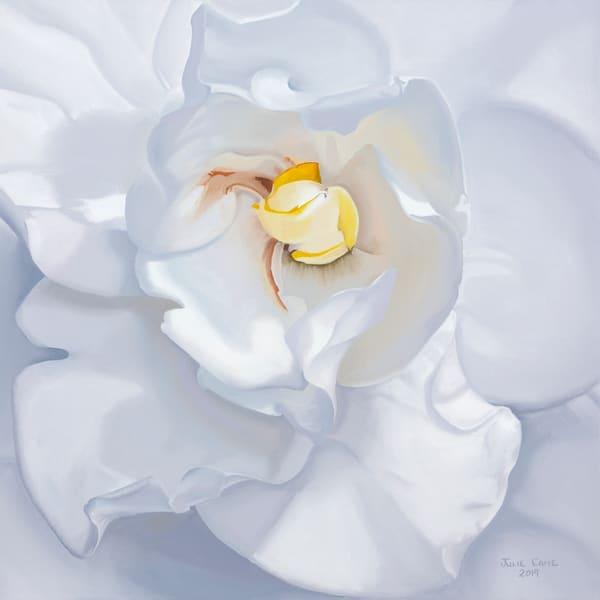 Gardenia Art   CastroLux Art Sales