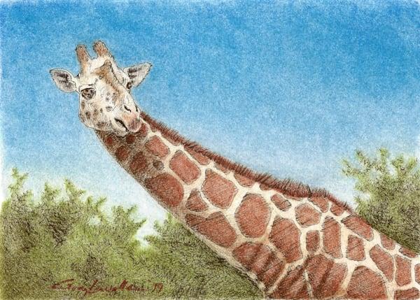 Giraffe2 Art   Greg Lewallen
