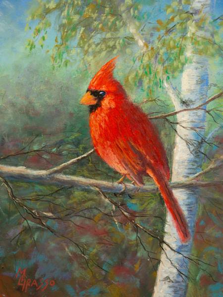 Evening Cardinal   Original Art   Mark Grasso Fine Art