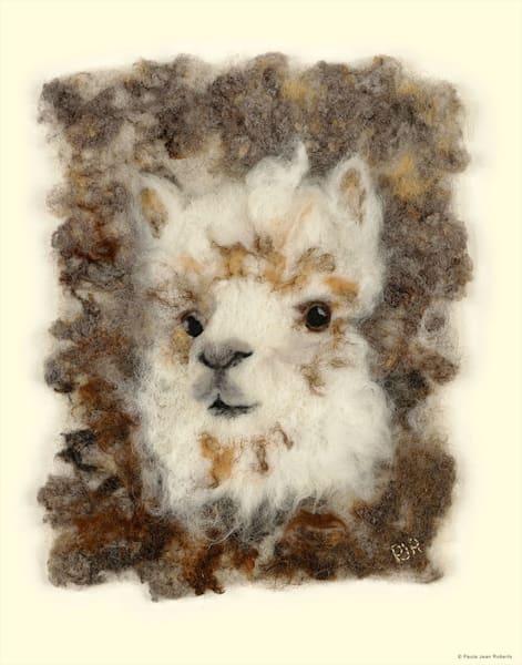 """Cotton"" fine art print by Paula Jean Roberts."