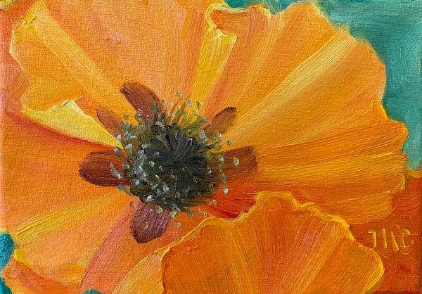 Sunshine Art | Marsha Clements Art