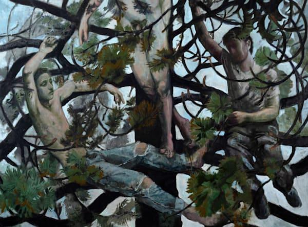 Boys In A Tree Art   Jono Wright Art
