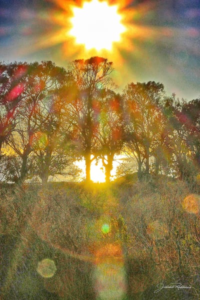 dreamy landscape coloredlens photography jackierobbinsstudio photographicprints buyartonline