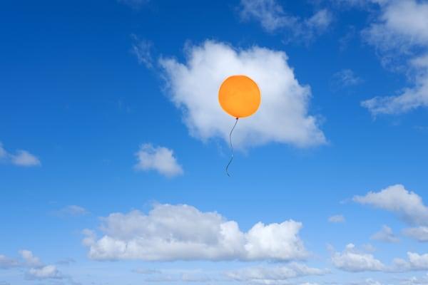 Harv Greenberg Photography - Sunny Side Up