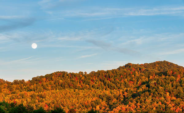 Ky Fall 8913 Photography Art | Jeff Rogers Photography, Inc.