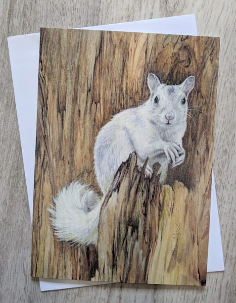 White Squirrel Card | Lori Vogel Studio
