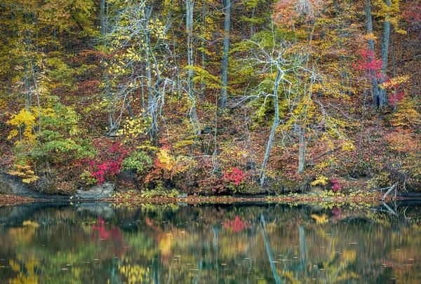 Greenbo Lake Fog 9384 Photography Art | Jeff Rogers Photography, Inc.