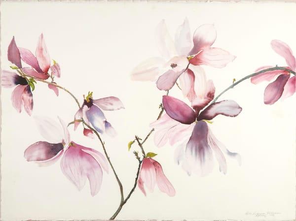 Magnolia In Bloom Art | Ruth Feldman Fine Art
