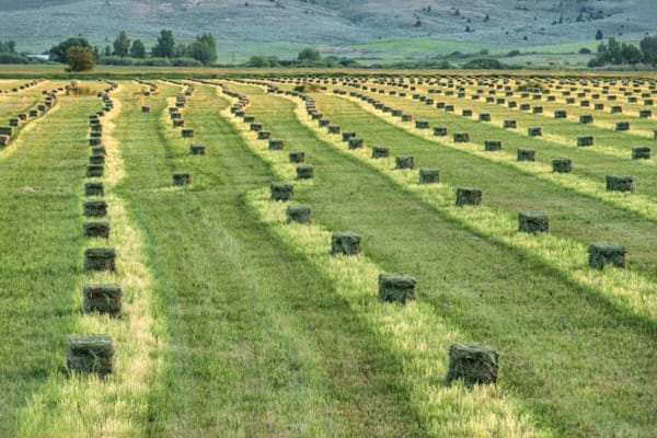 Bales Of Hay Photography Art | Monty Orr Photography