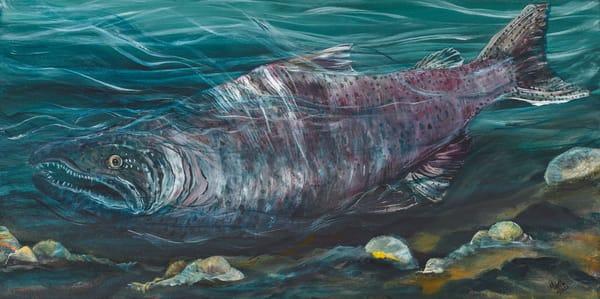 Salmon Art | lisaabbott