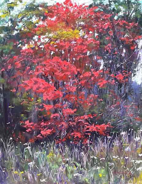 Autumn Maple Art | Kurt A. Weiser Fine Art