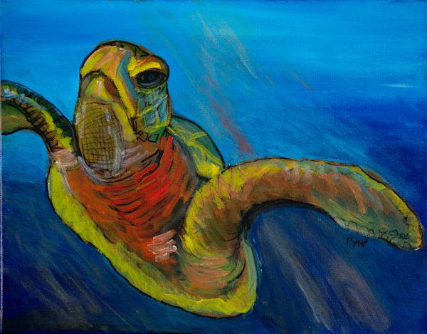 Kap Te O Tafiti   85 Art | Kap Culture & Arts