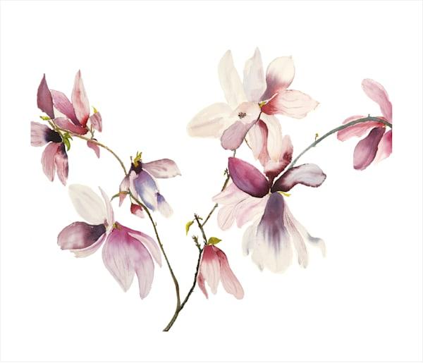 Magnolia Branching Art | Ruth Feldman Fine Art