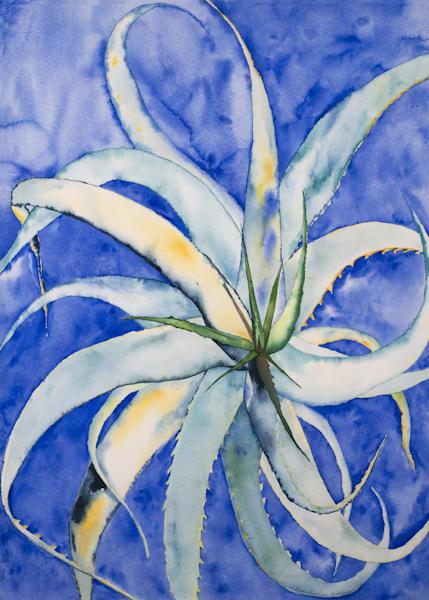 Desert Flower Art | Ruth Feldman Fine Art