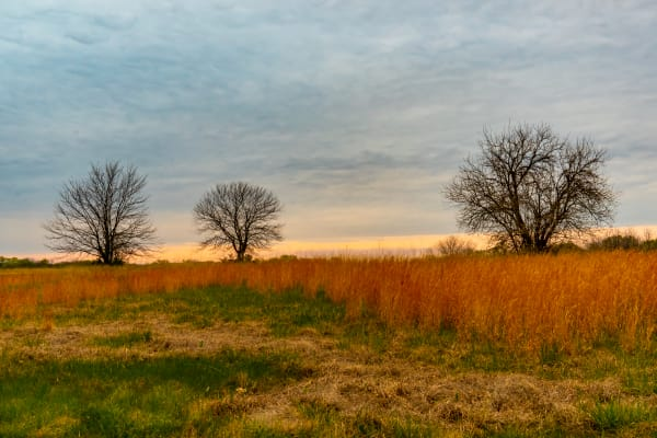 Kansas April Photography Art | Silver Spirit Photography