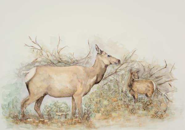 Safe Pastures Art   Debra Bruner Studio