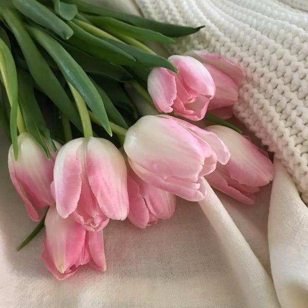 Tulips, textiles, photograph, print, pink-tulips