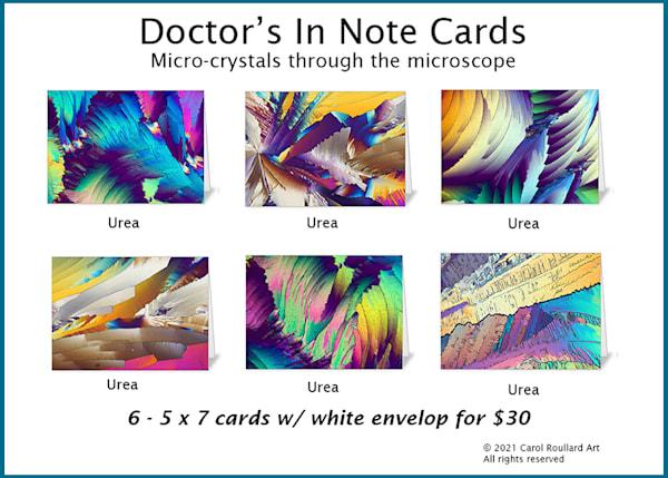 Doctor's In 6 Pack Of Note Cards | Carol Roullard Art