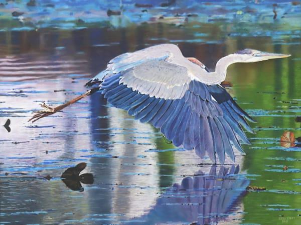 Swooping Heron Art | Greg Stett Art
